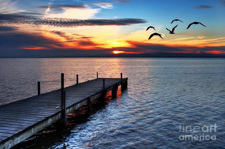 Sunrise Photograph - Gulls Fly Over The Sea by Kesipun