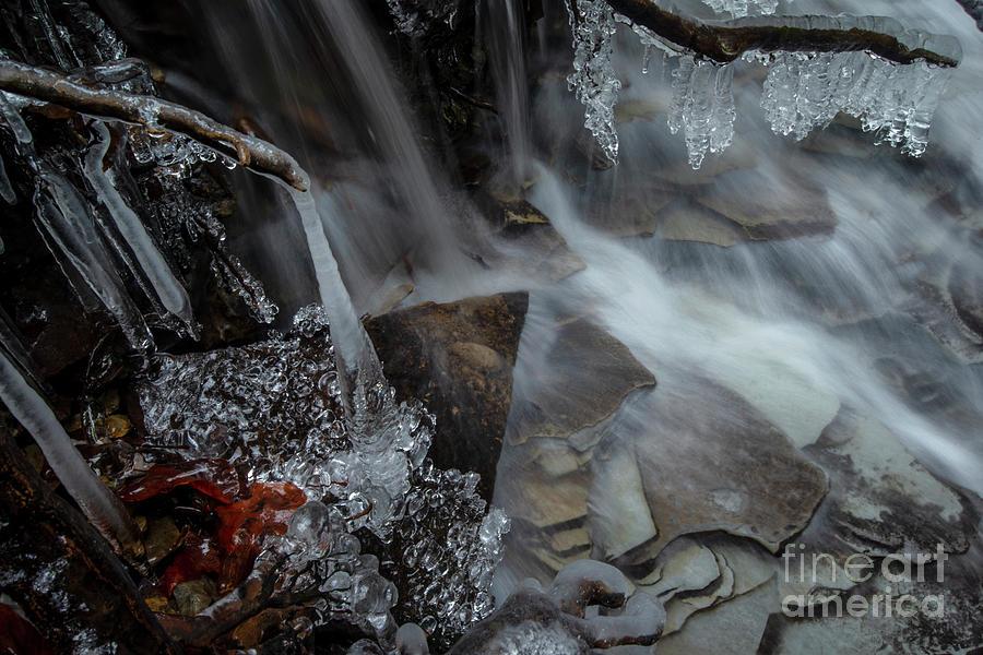 H2O Wonderland by Jane Axman