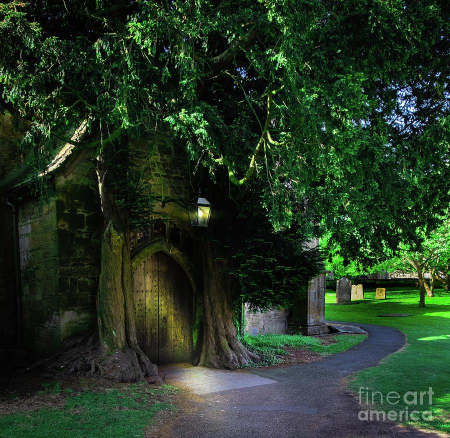 Habitat for Hobbits by Rochelle Sjolseth