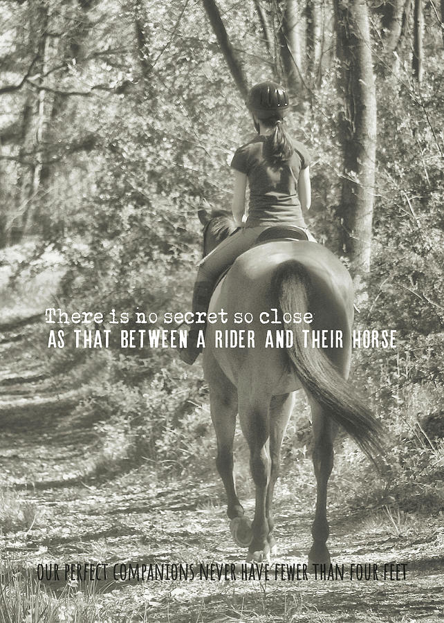 Horse Photograph - Hacking Quote by JAMART Photography
