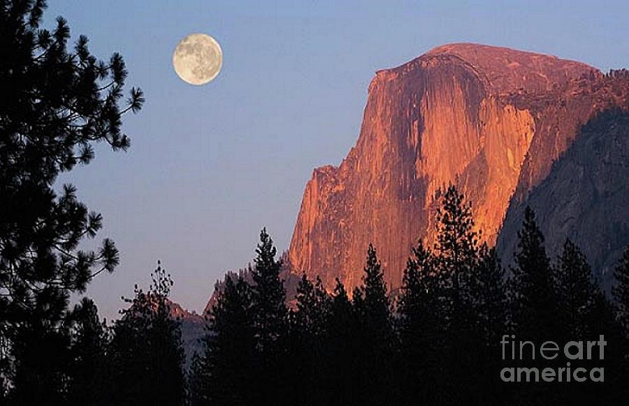 Half Dome At Yosemite by Rod Jellison