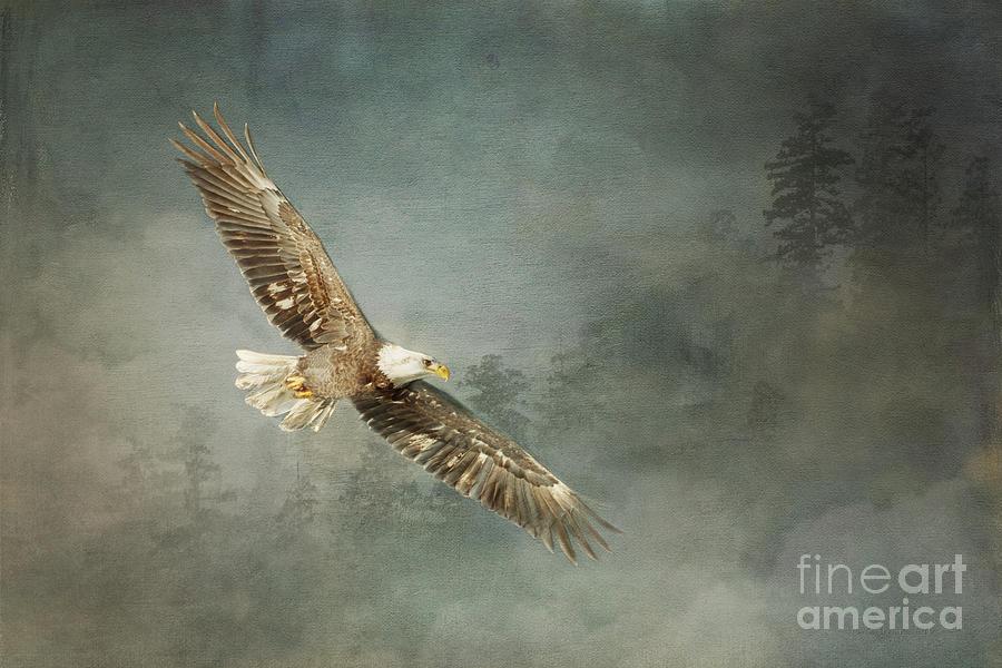 hallelujah by Beve Brown-Clark Photography