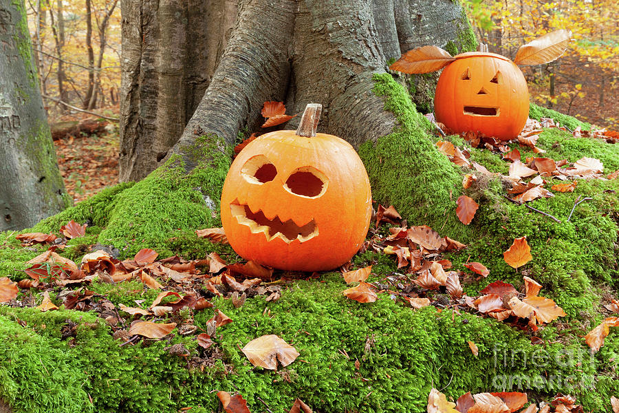 Halloween scary pumpkins in the woods by Simon Bratt Photography LRPS