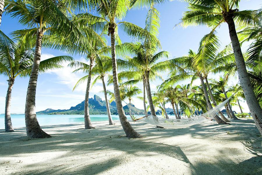 Hammock At Bora Bora, Tahiti Photograph by Yusuke Okada/amanaimagesrf