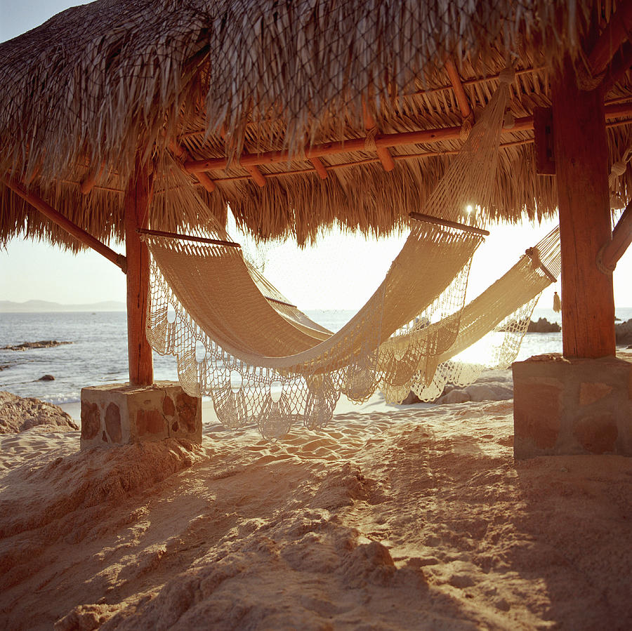 Hammocks In Beach Hut Photograph by Paul Taylor