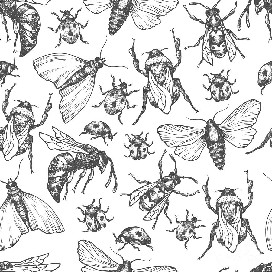 Bee Digital Art - Hand Drawn Vector Pattern With Insects by Olga Olmix