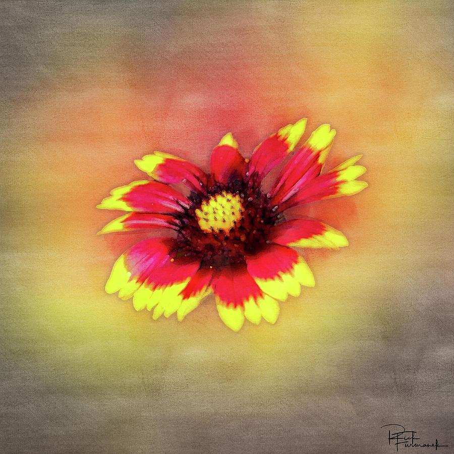 Hand Painted in Digital Watecolor by Rick Furmanek