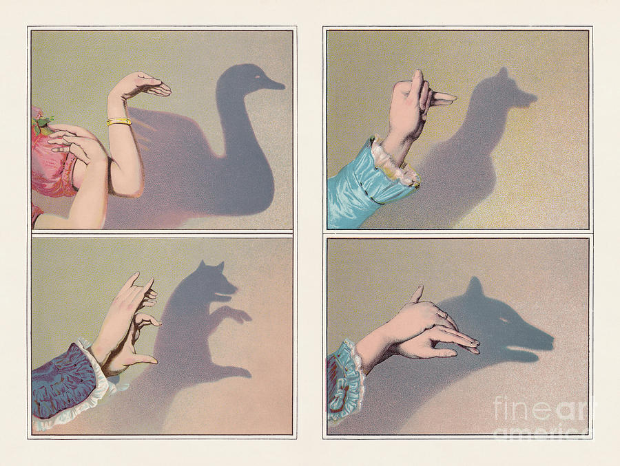 Hand Shadow Puppets Swan, Bear Digital Art by Zu 09