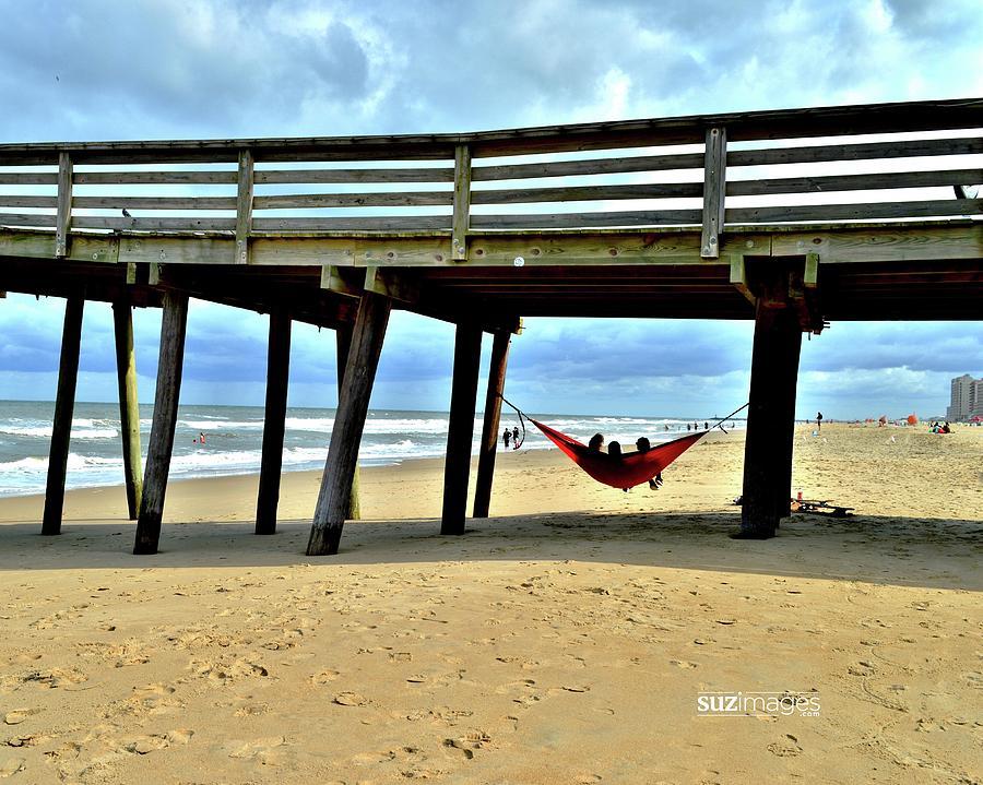 Hanging at Virginia Beach  by Susie Loechler