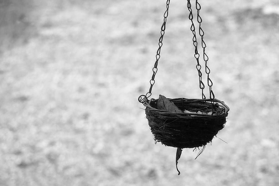 Hanging basket by Mariella Wassing