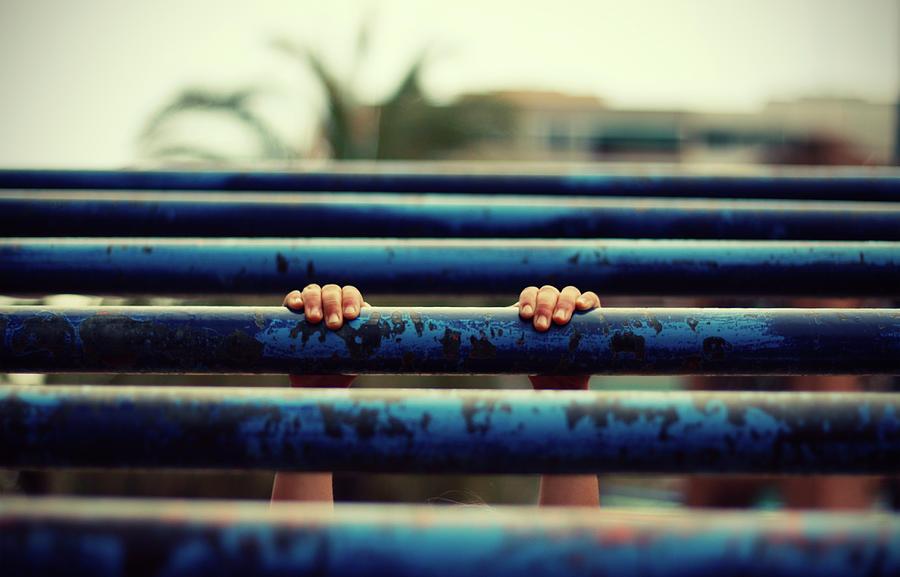 Hanging Photograph by Lita Bosch