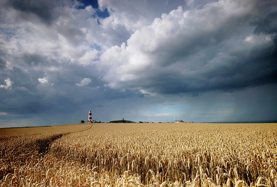 Happisburgh Lighthouse Photograph by A World Of Natural Diversity By Paul Shaw