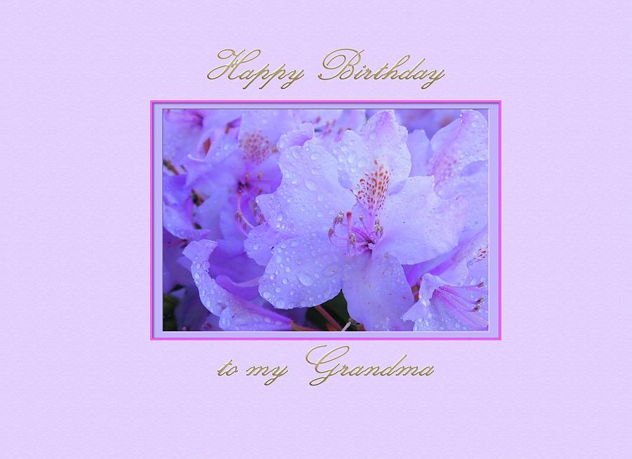 Happy Birthday to my Grandma with Purple  Hydrangeas by Jacqueline Sleter