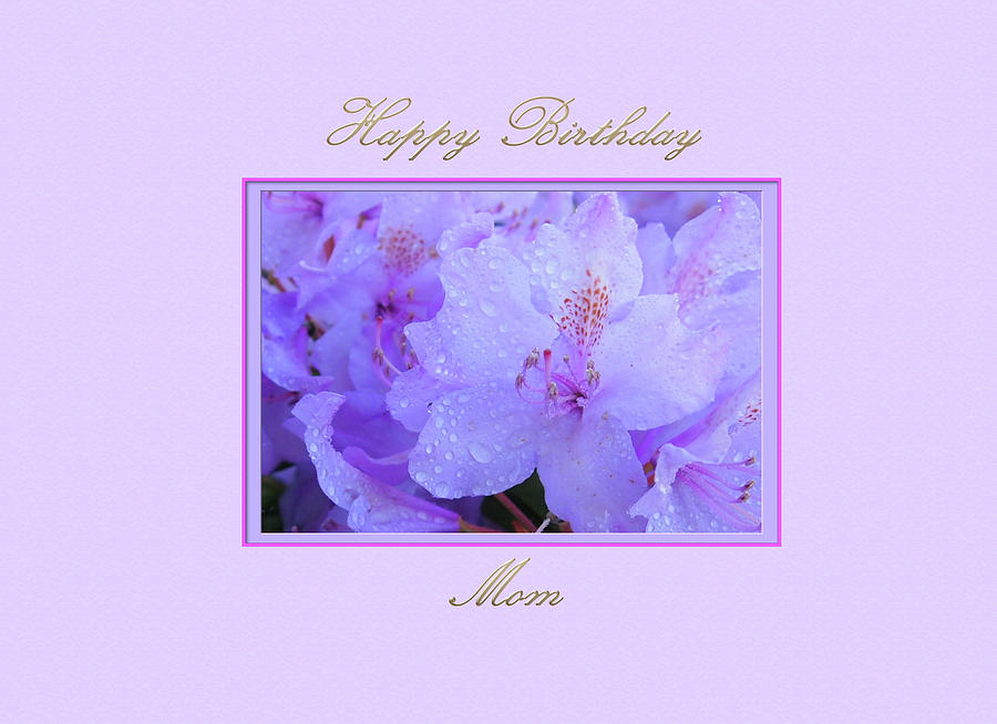 Happy Birthday to my Mom with Purple  Hydrangeas by Jacqueline Sleter