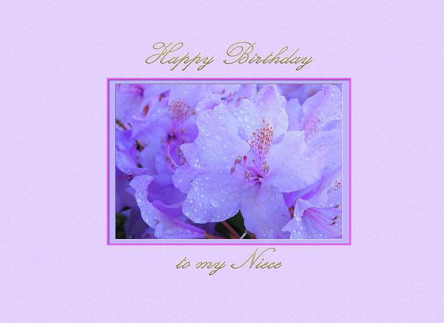 Happy Birthday to my Niece with  Purple  Hydrangeas by Jacqueline Sleter