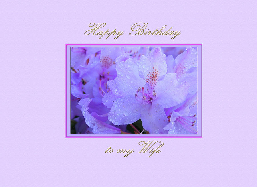 Happy Birthday to my Wife with  Purple  Hydrangeas by Jacqueline Sleter