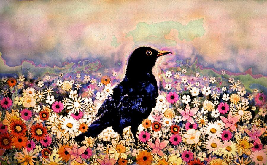 Happy Blackbird by Natalie Holland