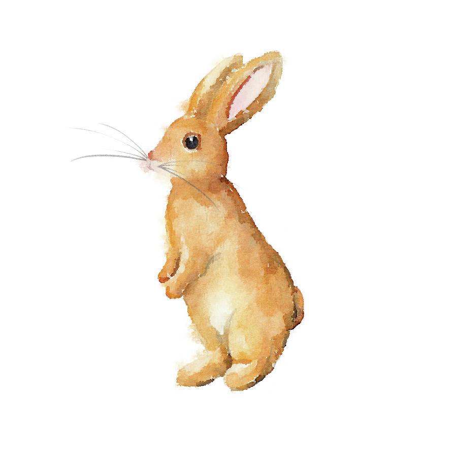 Happy Bunny I by Andi Metz
