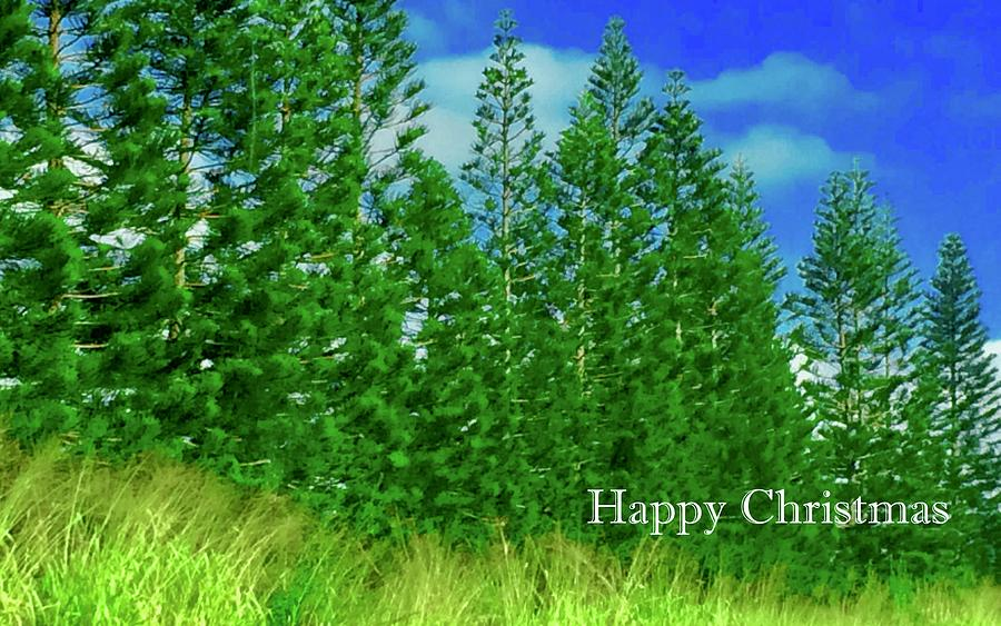 Happy Christmas Evergreens In Hawaii  by Debra Grace Addison