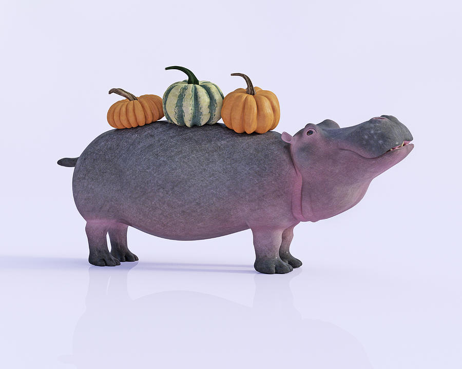 Hippo Digital Art - Pumpotomas by Betsy Knapp