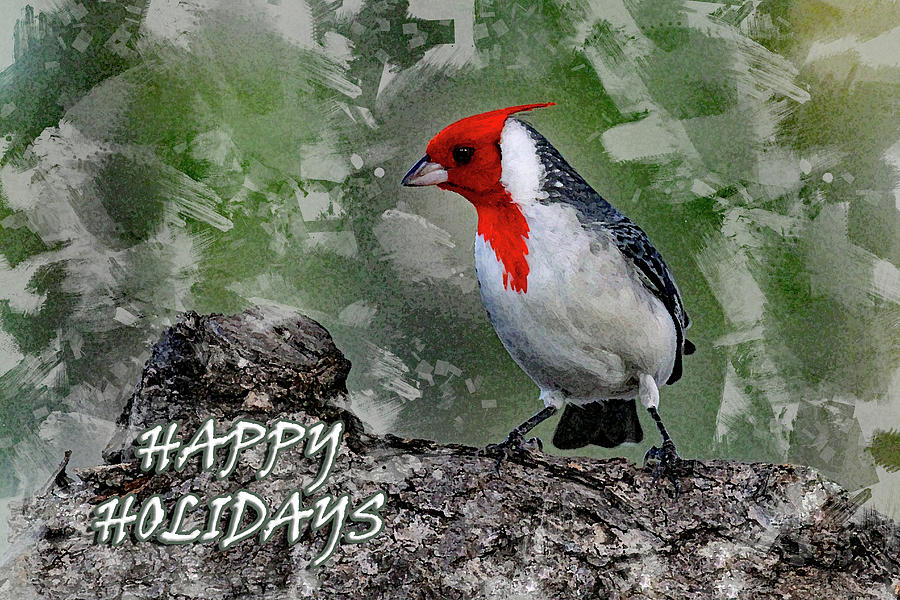 HAPPY HOLIDAYS - RED CRESTED by Jennifer Robin