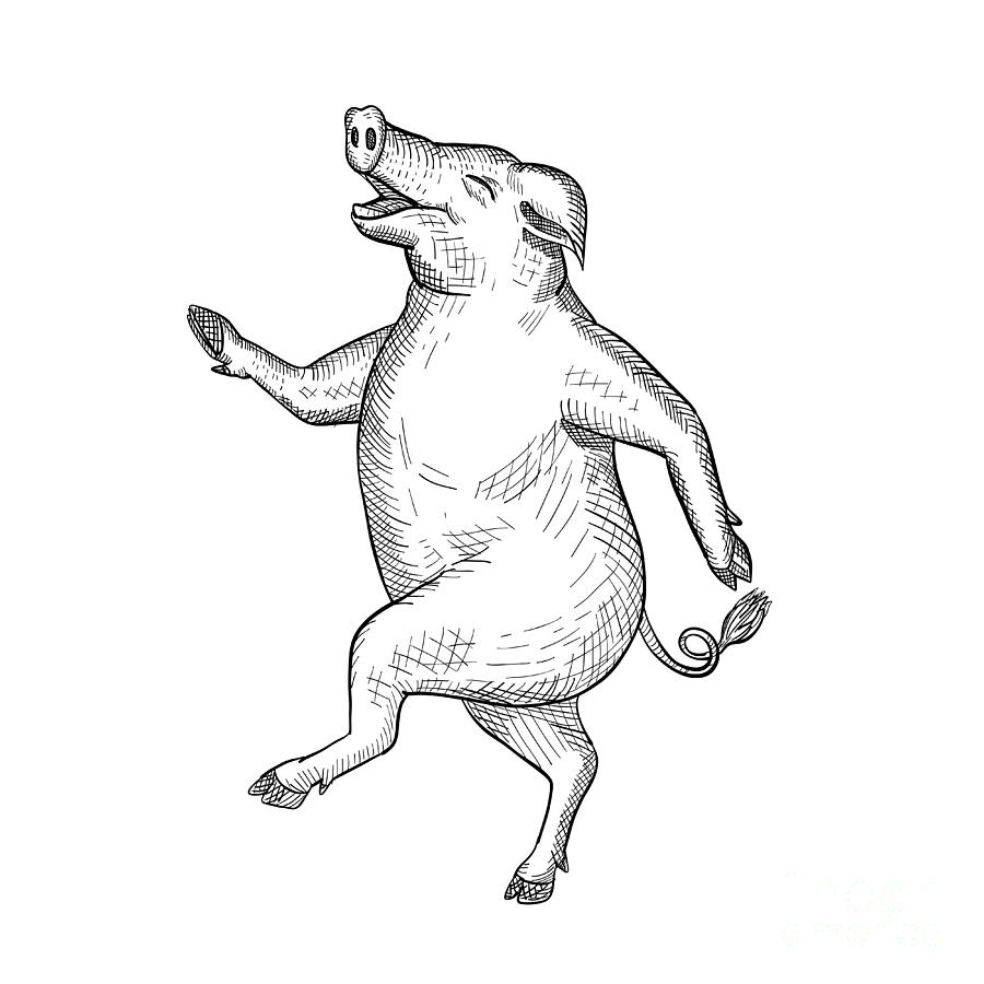 Drawing digital art happy pig dancing drawing retro black and white by aloysius patrimonio