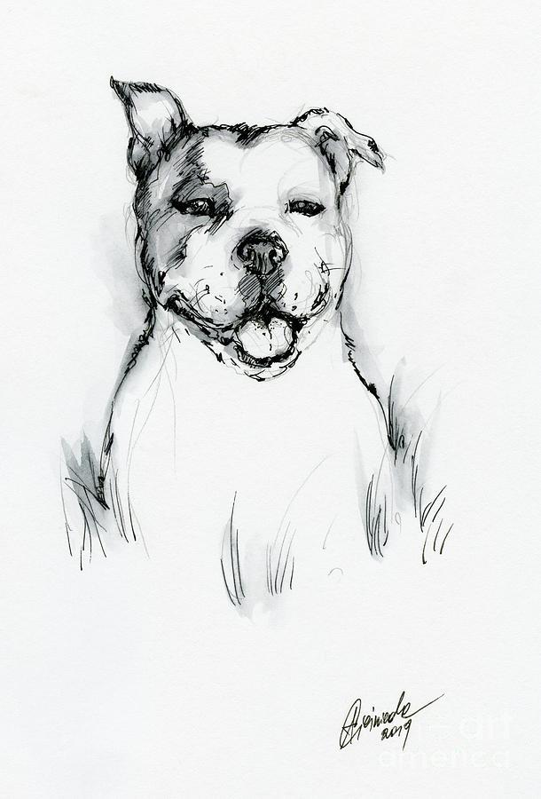 Happy pit bull by Angel Ciesniarska