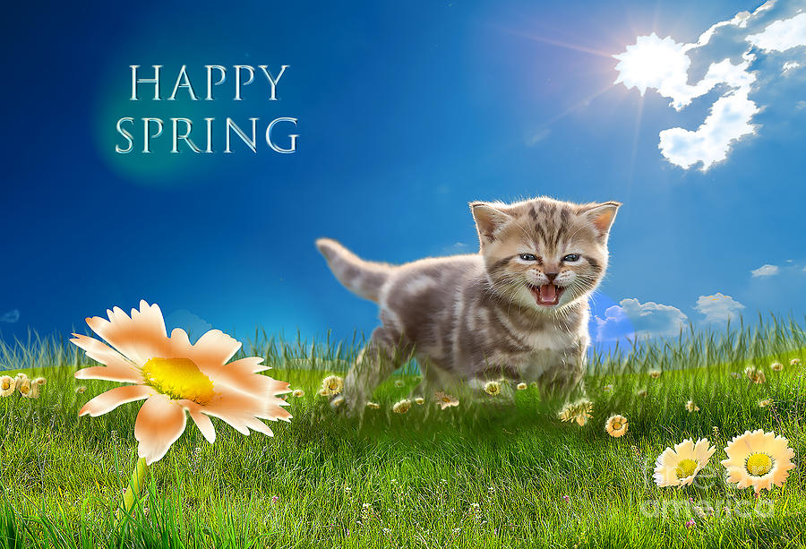 Happy Spring by Cynthia Leaphart