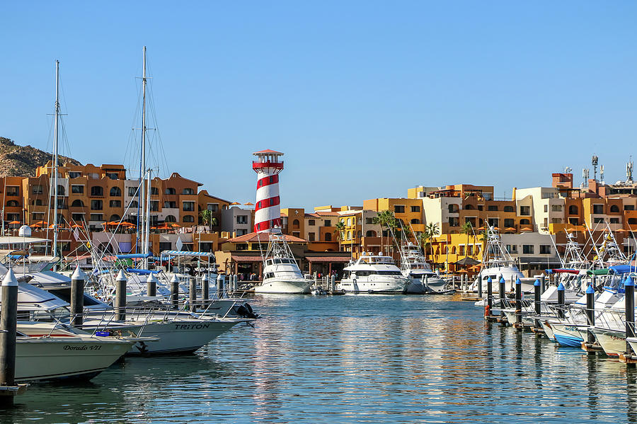 Harbor in Cabo San Lucas 1 by Dawn Richards