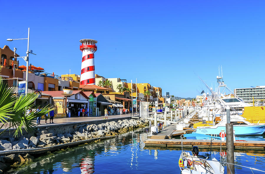 Harbor in Cabo San Lucas 2 by Dawn Richards
