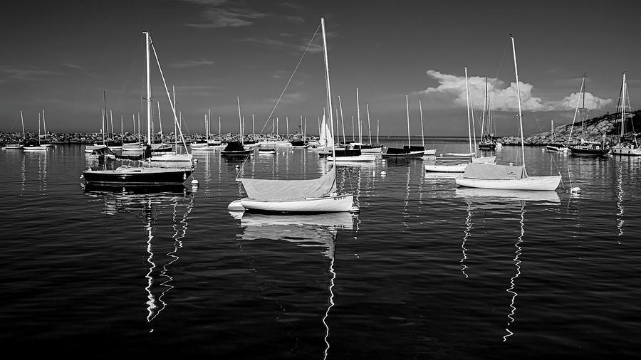 Harbor in Monochrome by Ray Silva