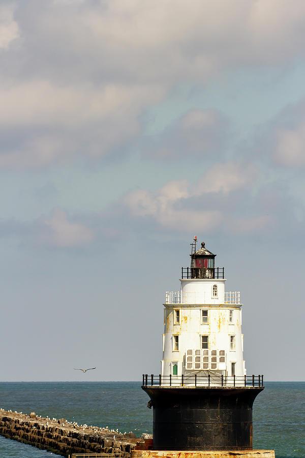 Harbor of Refuge Lighthouse and seawall by Karen Foley