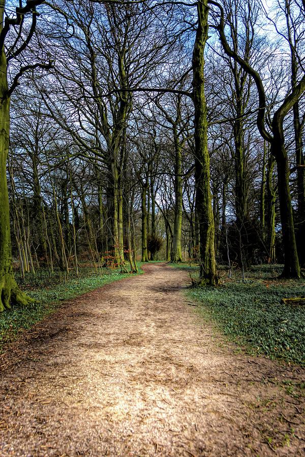 Hardwick Hall Lady Spencer's Walk by Scott Lyons