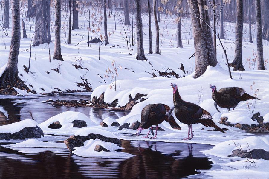 Wild Turkeys Painting - Hardwood Creek - Wild Turkeys by Wilhelm Goebel