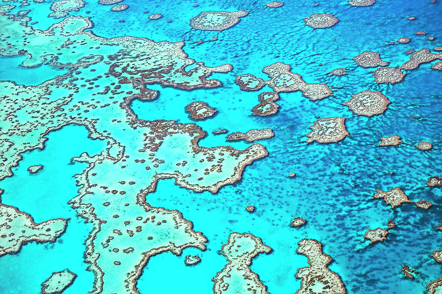 Hardy Reef In The Great Barrier Reef Photograph by Australian Scenics