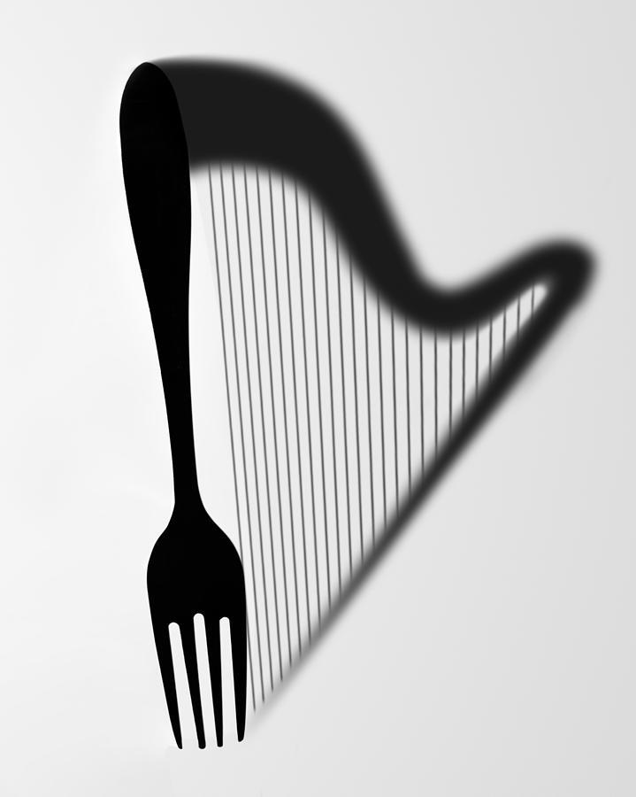Fork Photograph - Harp by 2b