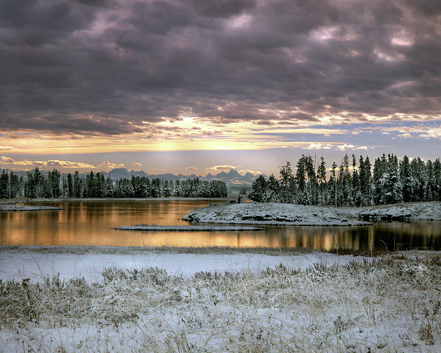 Idaho Photograph - Harriman Winter by Leland D Howard