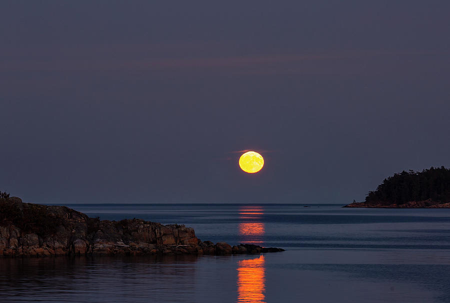 Moon Photograph - Harvest Moon At Brickyard by Randy Hall