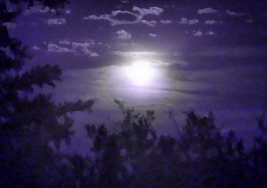 Harvest Moon in Pisces by Judy Kennedy