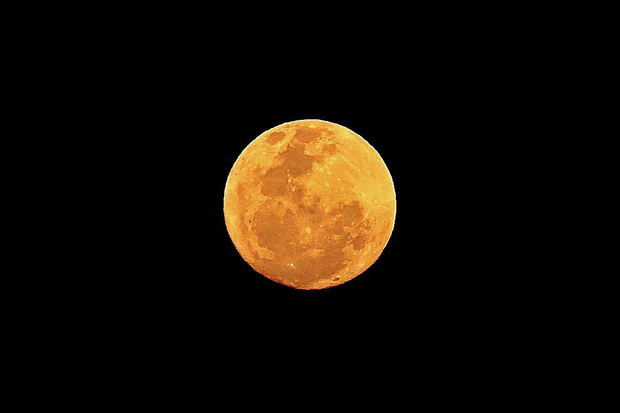 Harvest Moon Over Wayanad Photograph by Photograph By Pete Schnell