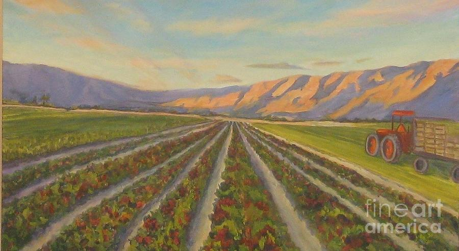 Harvest Time in Coachella Valley by Maria Hunt