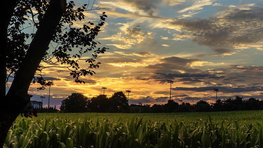 Harvest Time Sunset by Jason Fink