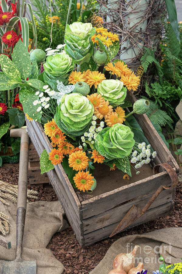 Wooden Crate Photograph - Harvested Vegetables And Flowers by Tim Gainey