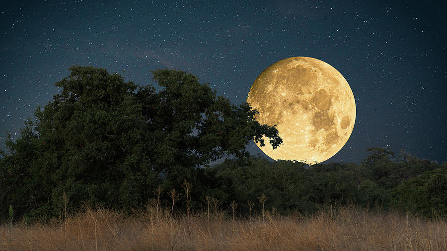 Harvest Moon September 2019 by Donald Pash