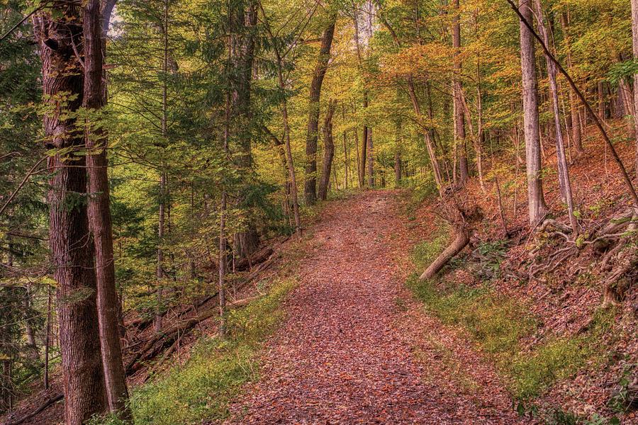 Hassen Creek Trail Entrance by Jason Fink