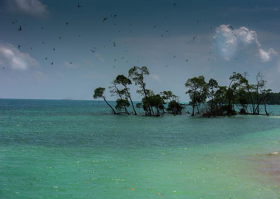 Havelock, Andamans Photograph by Photograph By Jayati Saha
