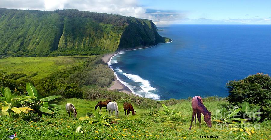 Hawaii big island Waipio Valley Lookout Digital Art by Carl Gouveia