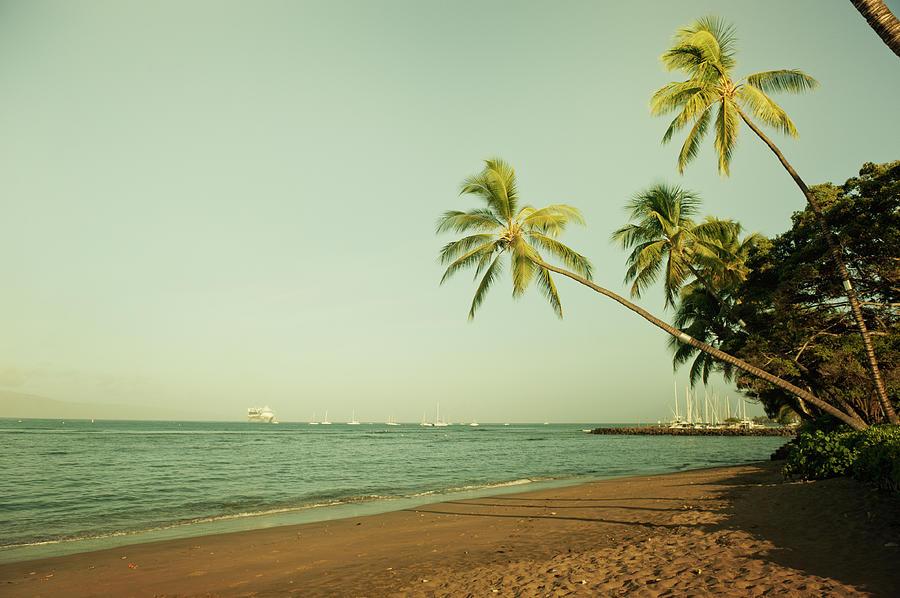 Hawaiian Beach Photograph by Rontech2000