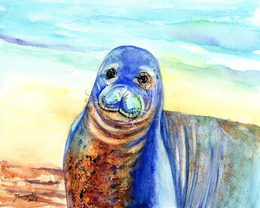 Hawaiian Monk Seal by Marionette Taboniar