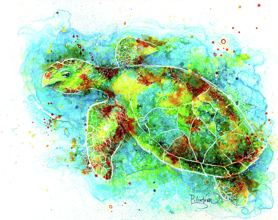 Colorful Hawksbill Sea Turtle by Patricia Lintner